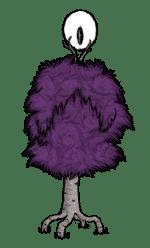 Poison Birchnut Tree