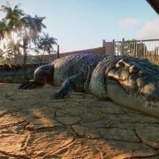 planet zoo game beta