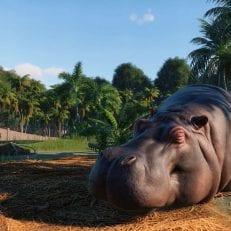 planet zoo hippo
