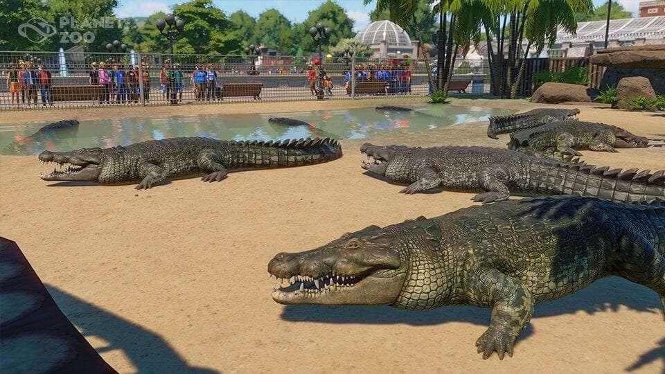 Planet Zoo Update 1.3