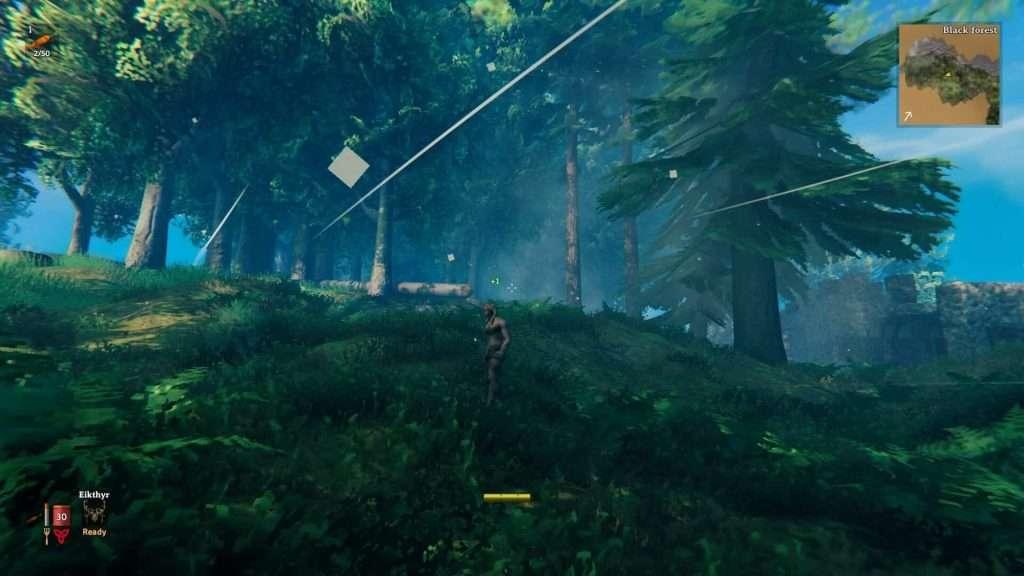 valheim biomes black forest