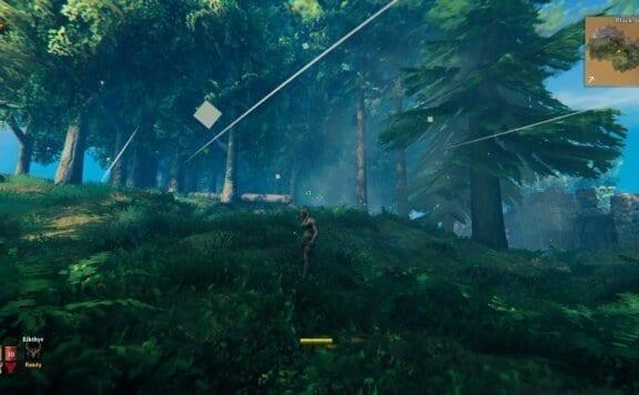 Biomes in Valheim